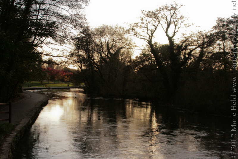River Itchen.
